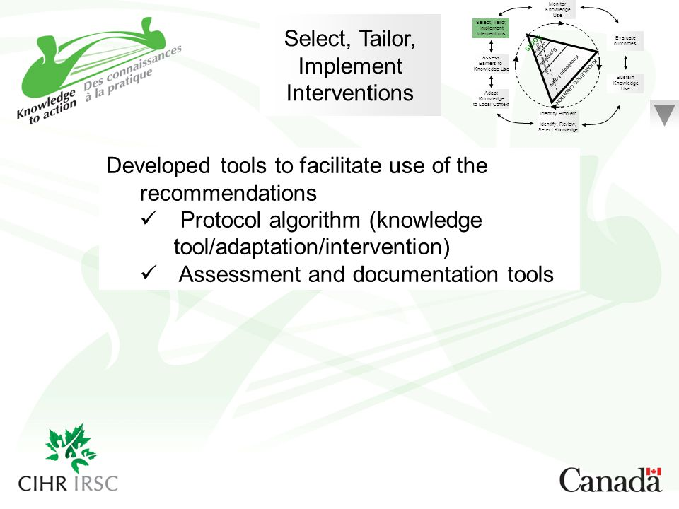 Select, Tailor, Implement Interventions Developed tools to facilitate use of the recommendations Protocol algorithm (knowledge tool/adaptation/interve