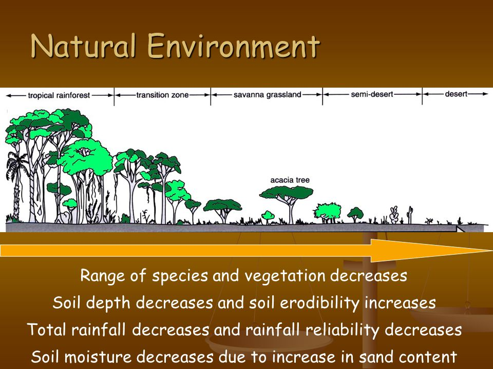 Natural Environment Range of species and vegetation decreases Soil depth decreases and soil erodibility increases Total rainfall decreases and rainfall reliability decreases Soil moisture decreases due to increase in sand content