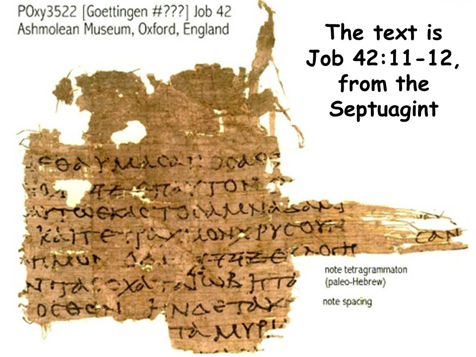 The text is Job 42:11-12, from the Septuagint
