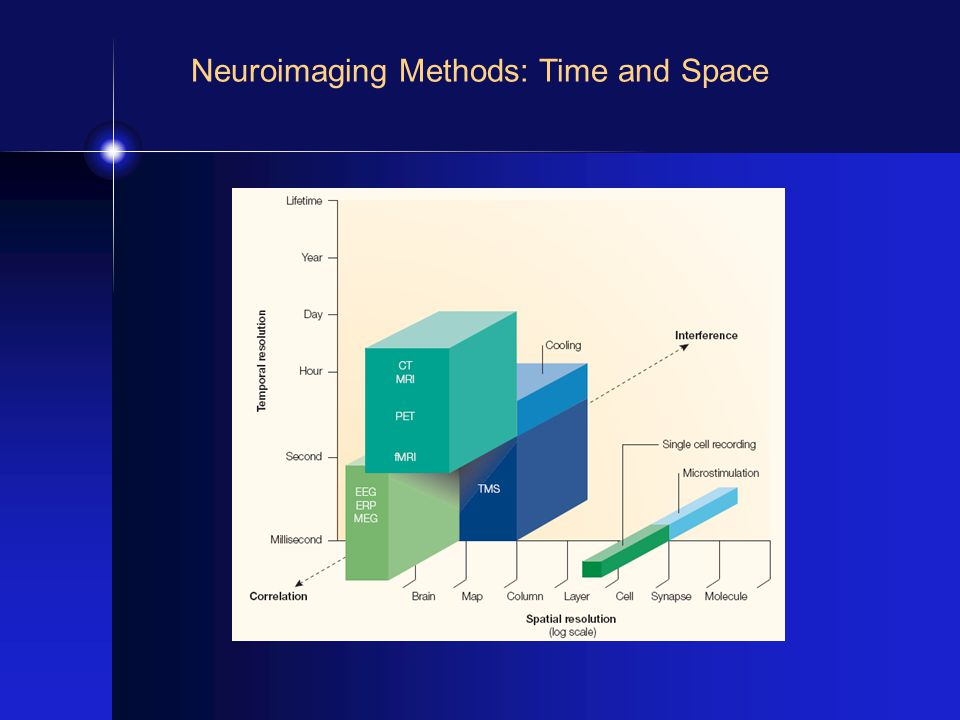 Neuroimaging Methods: Time and Space