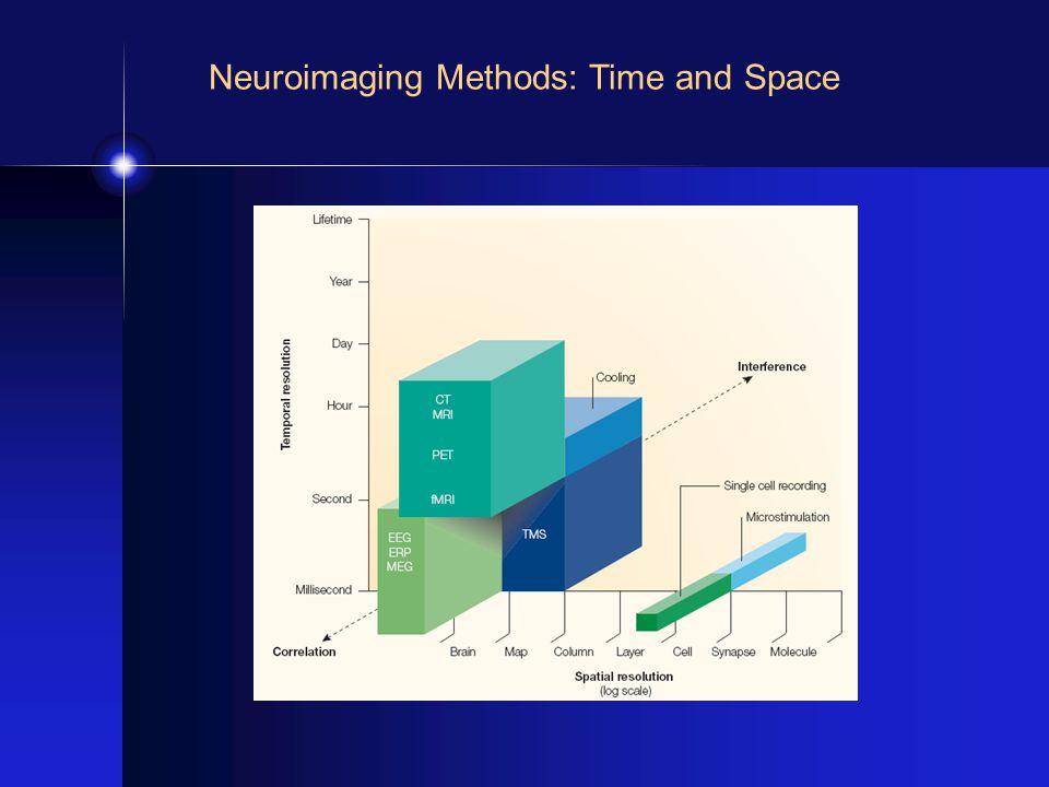 EEG/MEG Three 64 electrode system 4D Neuroimaging 248 channel MEG Cortex Neuron