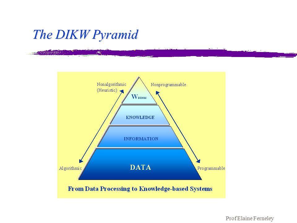 Prof Elaine Ferneley The DIKW Pyramid