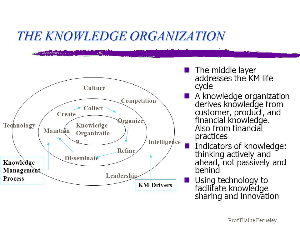 Prof Elaine Ferneley THE KNOWLEDGE ORGANIZATION nThe middle layer addresses the KM life cycle nA knowledge organization derives knowledge from customer, product, and financial knowledge.