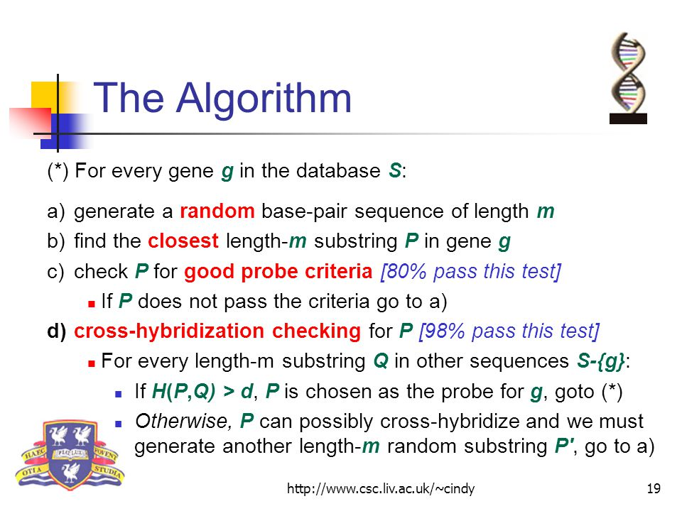 http://www.csc.liv.ac.uk/~cindy19 The Algorithm (*) For every gene g in the database S: a)generate a random base-pair sequence of length m b)find the closest length-m substring P in gene g c)check P for good probe criteria [80% pass this test] If P does not pass the criteria go to a) d)cross-hybridization checking for P [98% pass this test] For every length-m substring Q in other sequences S-{g}: If H(P,Q) > d, P is chosen as the probe for g, goto (*) Otherwise, P can possibly cross-hybridize and we must generate another length-m random substring P , go to a)