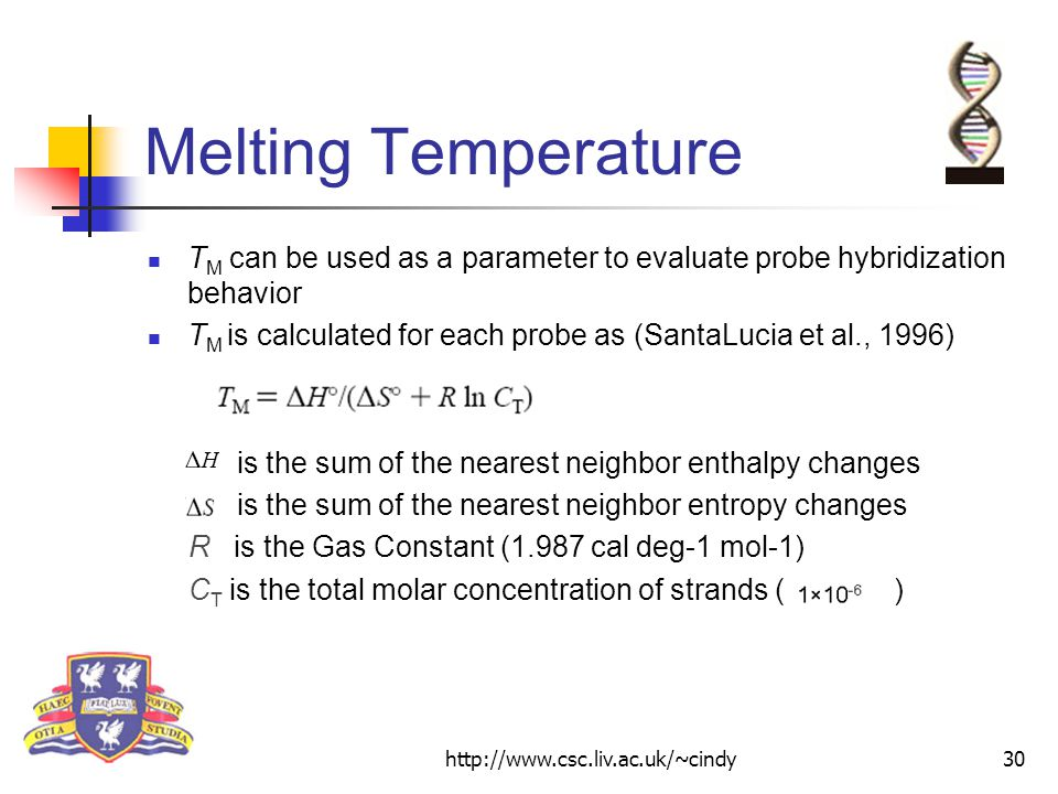 http://www.csc.liv.ac.uk/~cindy30 Melting Temperature T M can be used as a parameter to evaluate probe hybridization behavior T M is calculated for each probe as (SantaLucia et al., 1996) is the sum of the nearest neighbor enthalpy changes is the sum of the nearest neighbor entropy changes R is the Gas Constant (1.987 cal deg-1 mol-1) C T is the total molar concentration of strands ( )