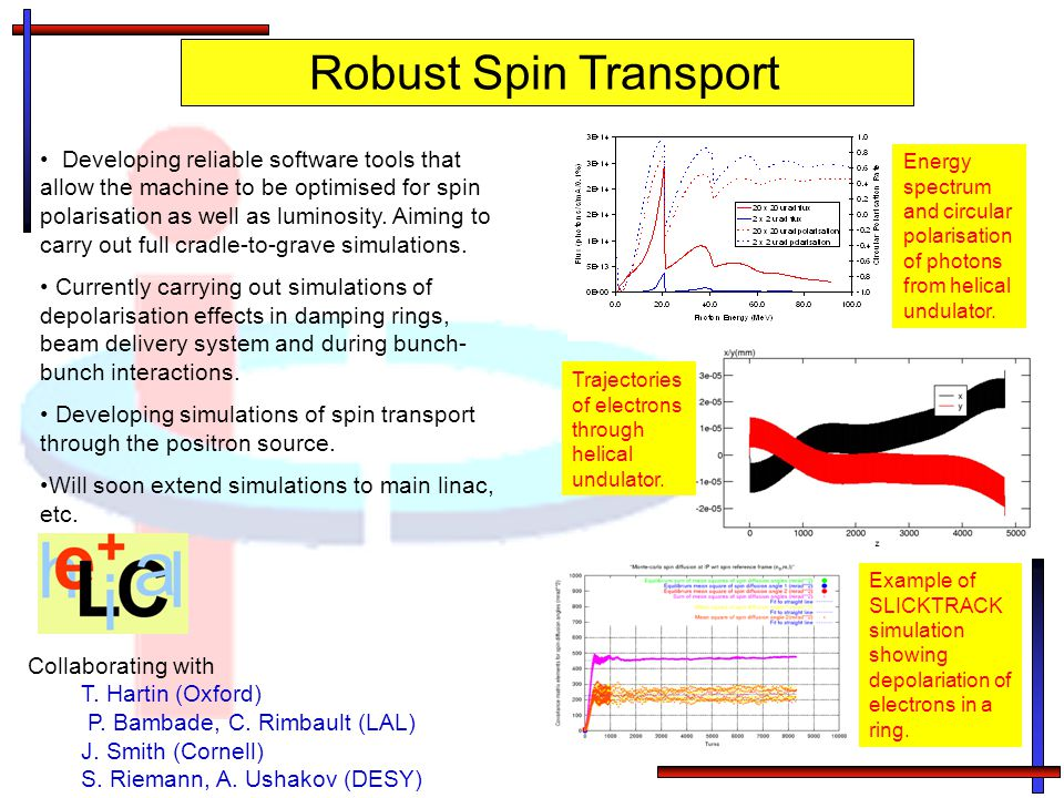 Robust Spin Transport Developing reliable software tools that allow the machine to be optimised for spin polarisation as well as luminosity.