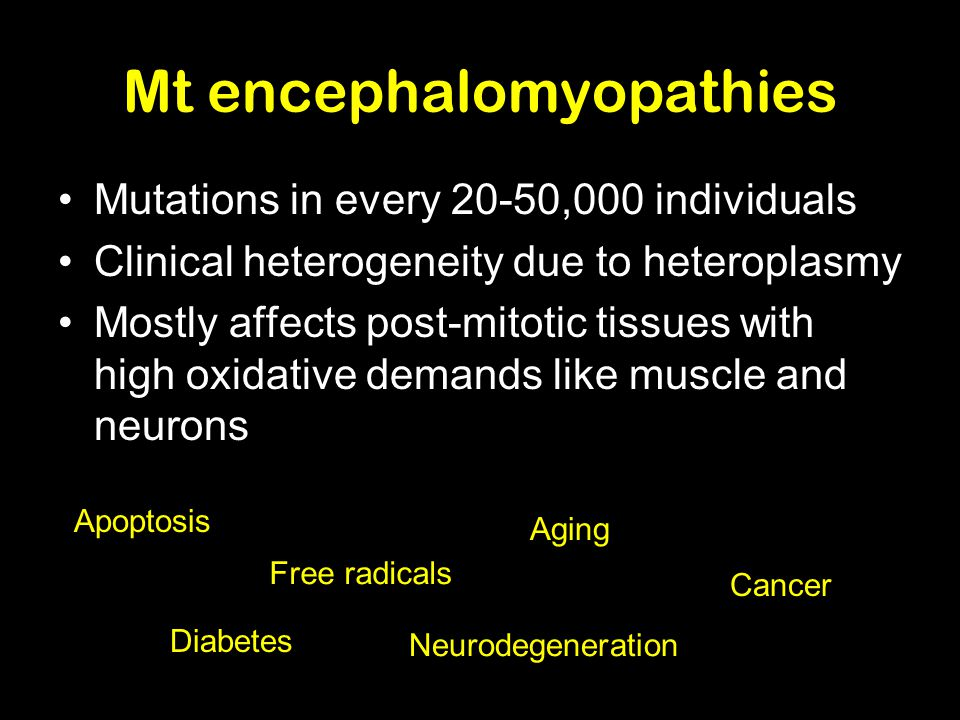 Mt encephalomyopathies Mutations in every 20-50,000 individuals Clinical heterogeneity due to heteroplasmy Mostly affects post-mitotic tissues with high oxidative demands like muscle and neurons Apoptosis Free radicals Aging Cancer Neurodegeneration Diabetes