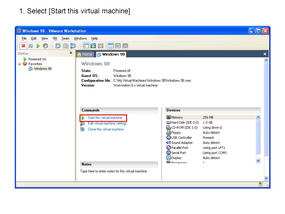 1. Select [Start this virtual machine]