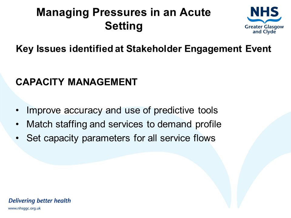 Key Issues identified at Stakeholder Engagement Event CAPACITY MANAGEMENT Improve accuracy and use of predictive tools Match staffing and services to