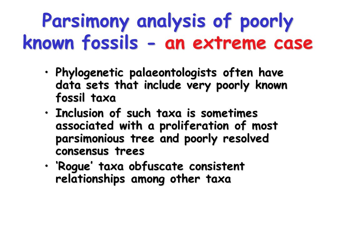 Parsimony analysis of poorly known fossils - an extreme case Phylogenetic palaeontologists often have data sets that include very poorly known fossil taxaPhylogenetic palaeontologists often have data sets that include very poorly known fossil taxa Inclusion of such taxa is sometimes associated with a proliferation of most parsimonious tree and poorly resolved consensus treesInclusion of such taxa is sometimes associated with a proliferation of most parsimonious tree and poorly resolved consensus trees 'Rogue' taxa obfuscate consistent relationships among other taxa'Rogue' taxa obfuscate consistent relationships among other taxa