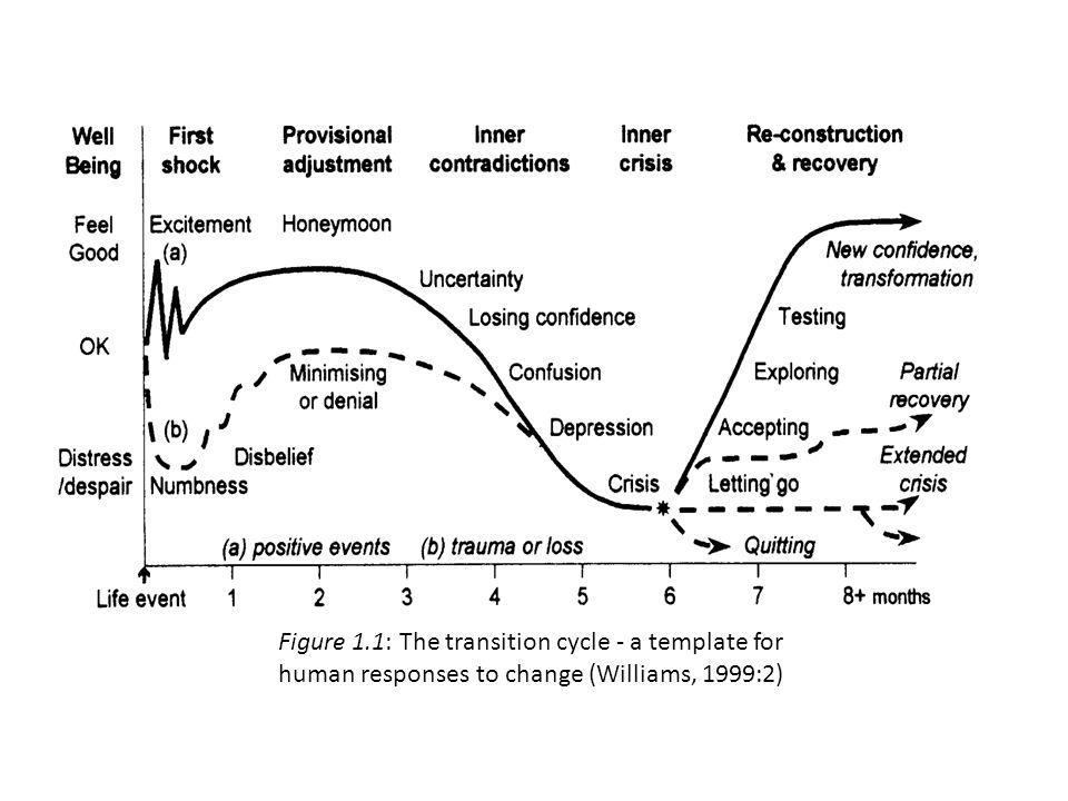 Figure 1.1: The transition cycle - a template for human responses to change (Williams, 1999:2)