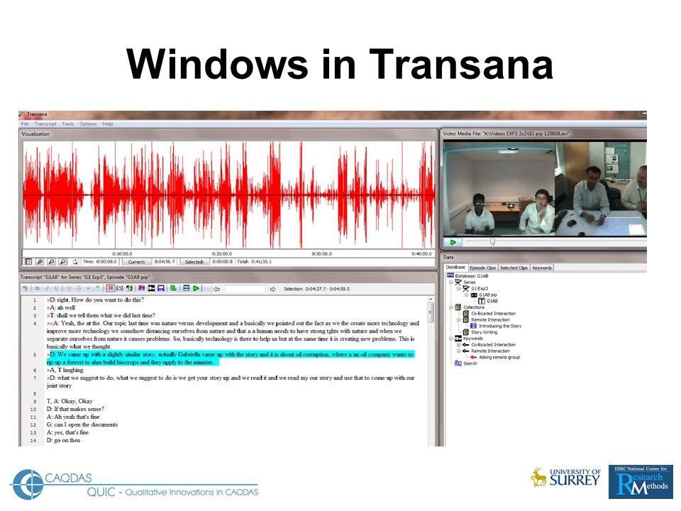Windows in Transana