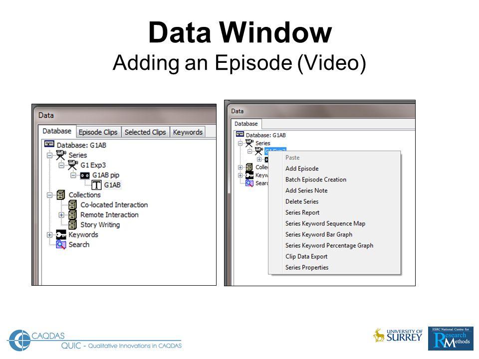 Data Window Adding an Episode (Video)