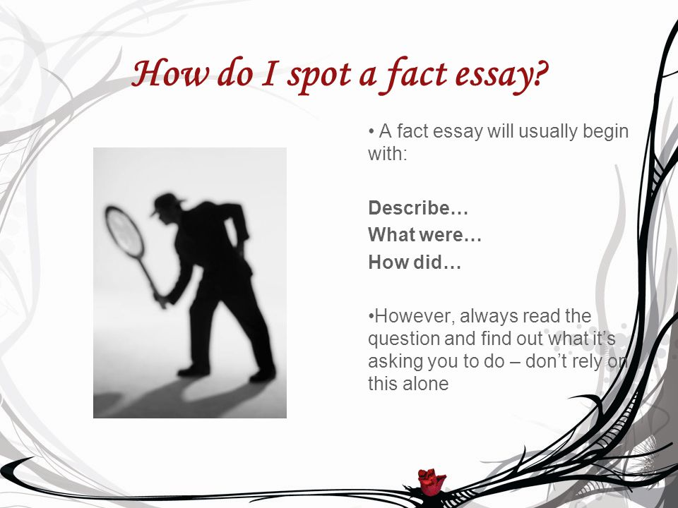 How do I spot a fact essay.