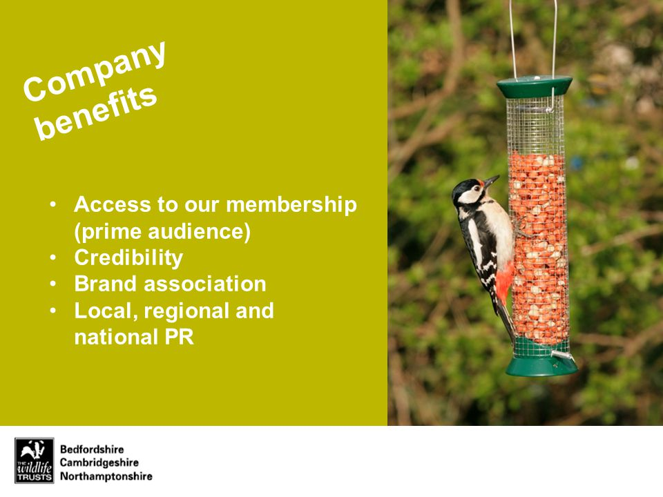 Company benefits Access to our membership (prime audience) Credibility Brand association Local, regional and national PR