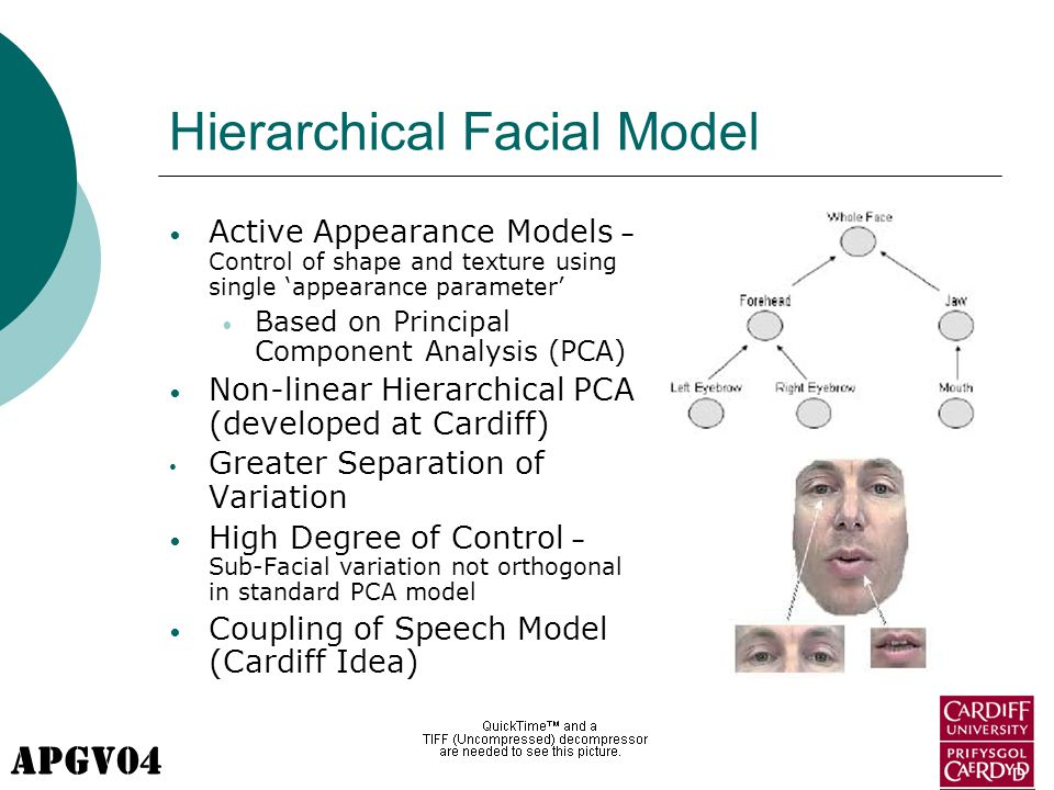 APGV04 Hierarchical Facial Model Active Appearance Models – Control of shape and texture using single 'appearance parameter' Based on Principal Component Analysis (PCA) Non-linear Hierarchical PCA (developed at Cardiff) Greater Separation of Variation High Degree of Control – Sub-Facial variation not orthogonal in standard PCA model Coupling of Speech Model (Cardiff Idea)