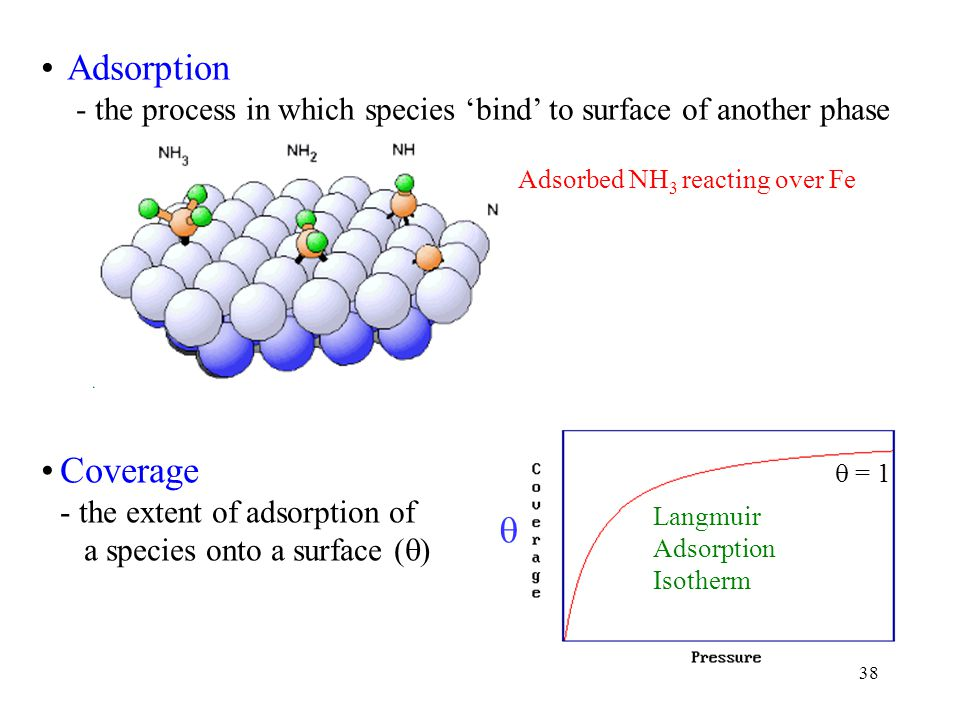 38 Adsorption - the process in which species 'bind' to surface of another phase Coverage - the extent of adsorption of a species onto a surface (  )