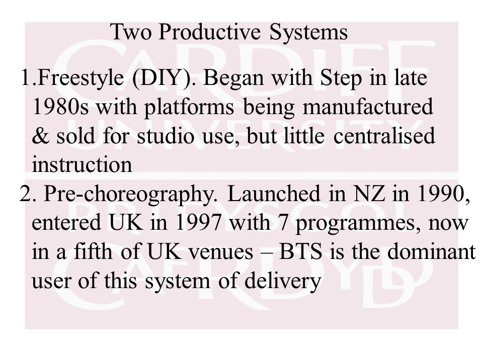 Two Productive Systems 1.Freestyle (DIY).