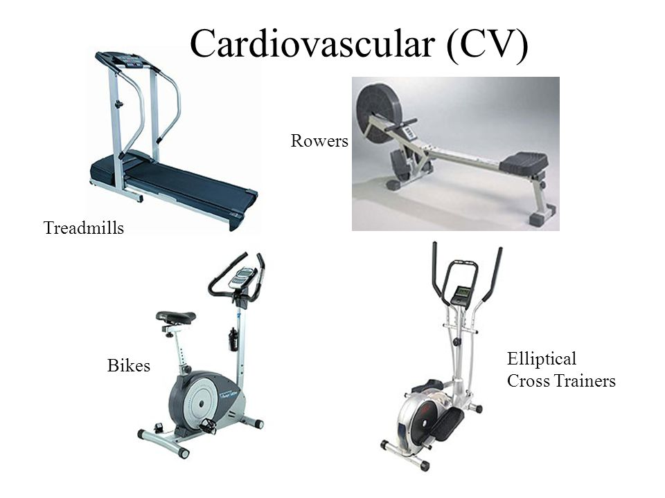 Treadmills Bikes Elliptical Cross Trainers Rowers Cardiovascular (CV)