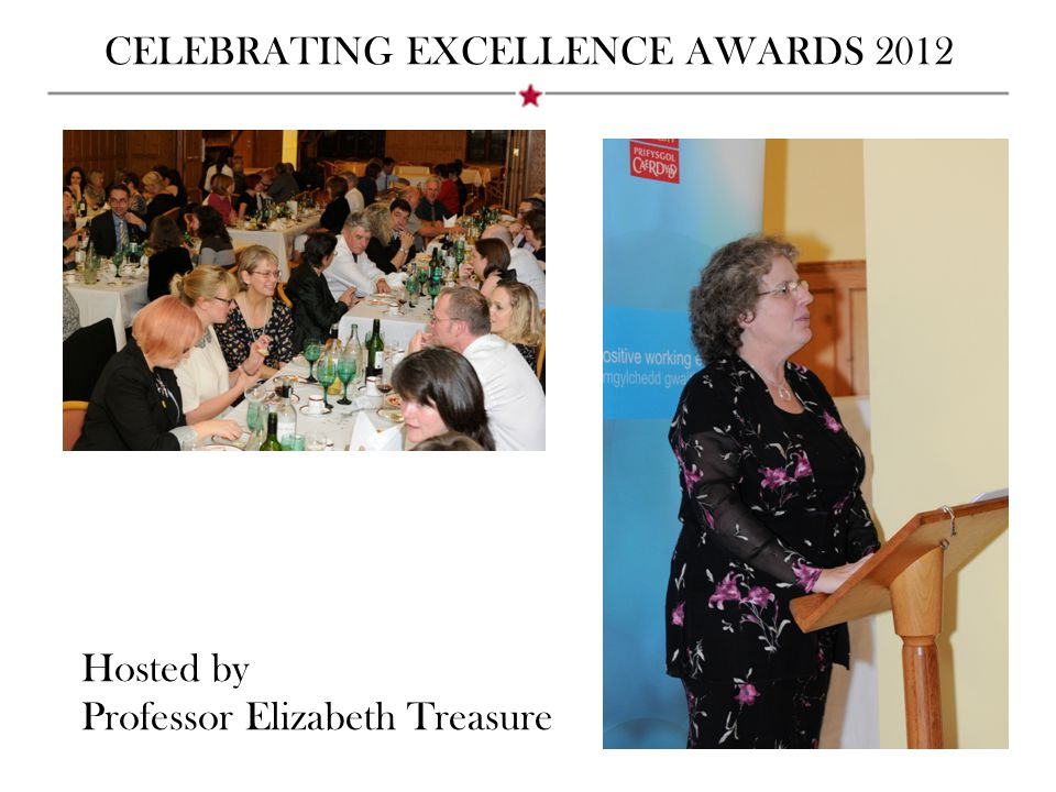 CELEBRATING EXCELLENCE AWARDS 2012 Hosted by Professor Elizabeth Treasure