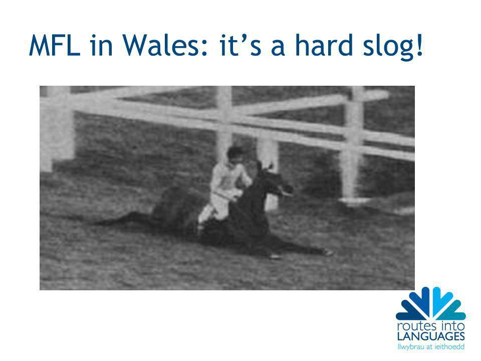 MFL in Wales: it's a hard slog!