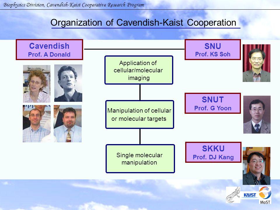 Organization of Cavendish-Kaist Cooperation Cavendish Prof.