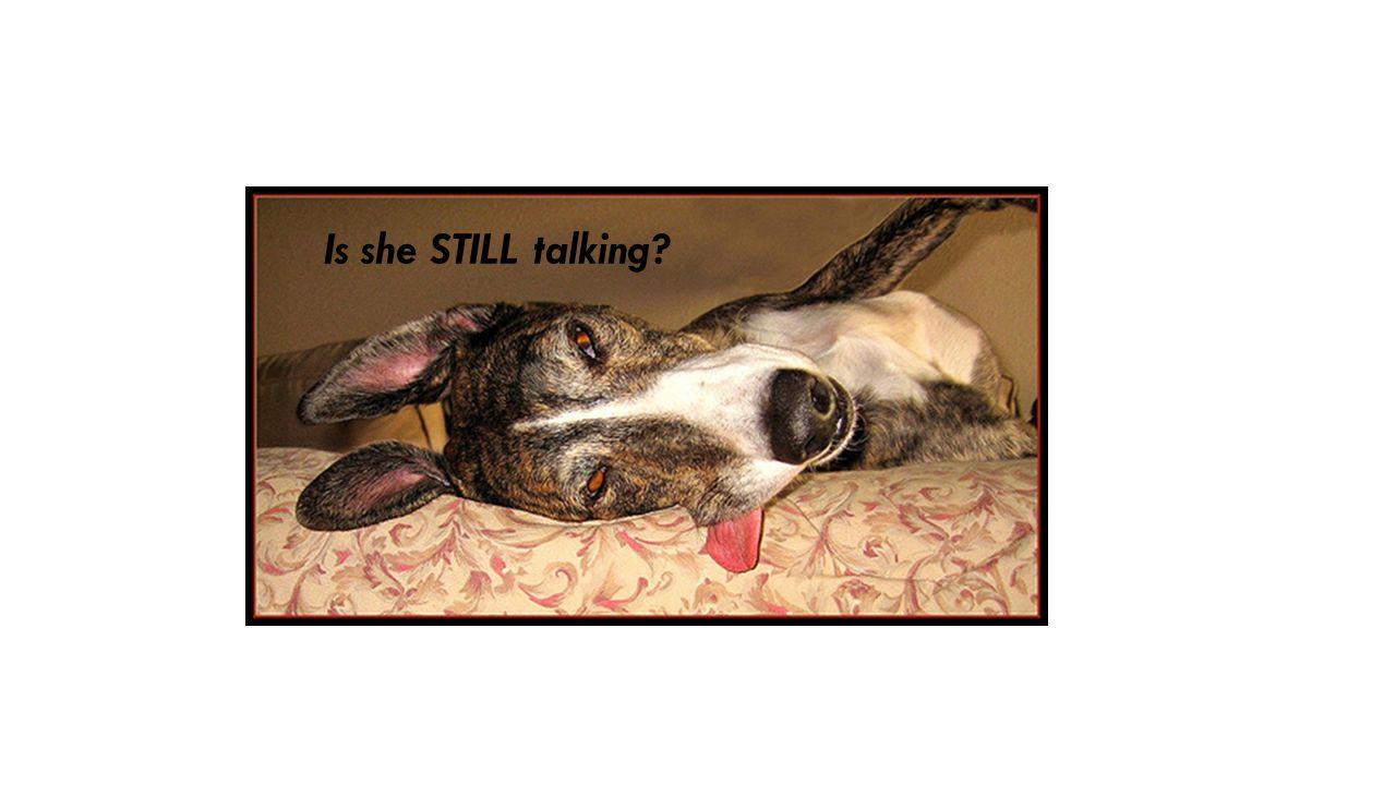 Is she STILL talking?