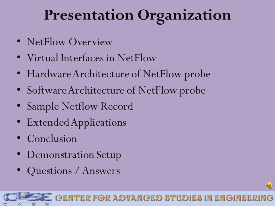NetFlow Overview Virtual Interfaces in NetFlow Hardware Architecture of NetFlow probe Software Architecture of NetFlow probe Sample Netflow Record Ext