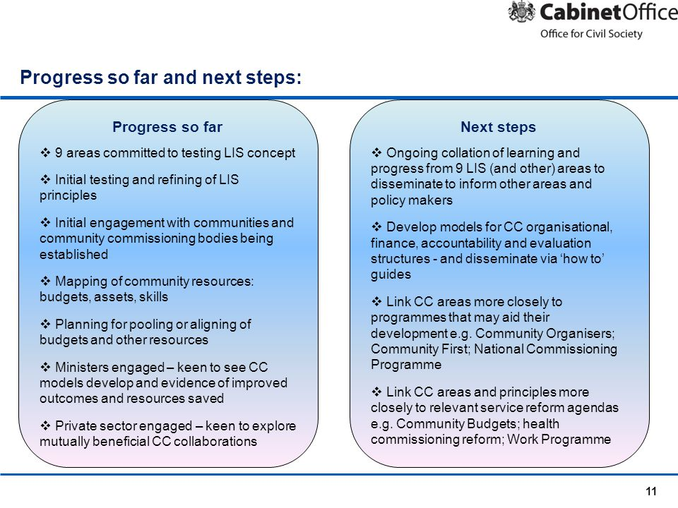 11 Progress so far and next steps: Progress so far  9 areas committed to testing LIS concept  Initial testing and refining of LIS principles  Initi