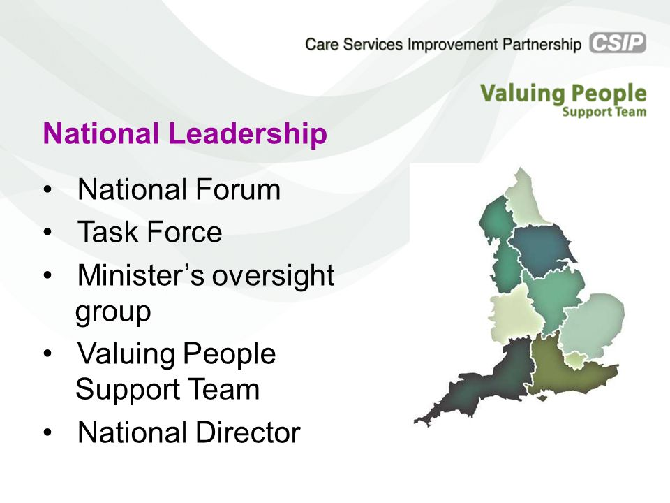 National Leadership National Forum Task Force Minister's oversight group Valuing People Support Team National Director