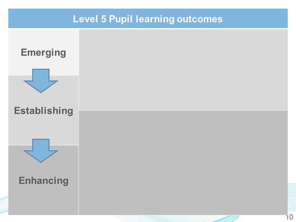 10 Level 5 Pupil learning outcomes Emerging Establishing Enhancing