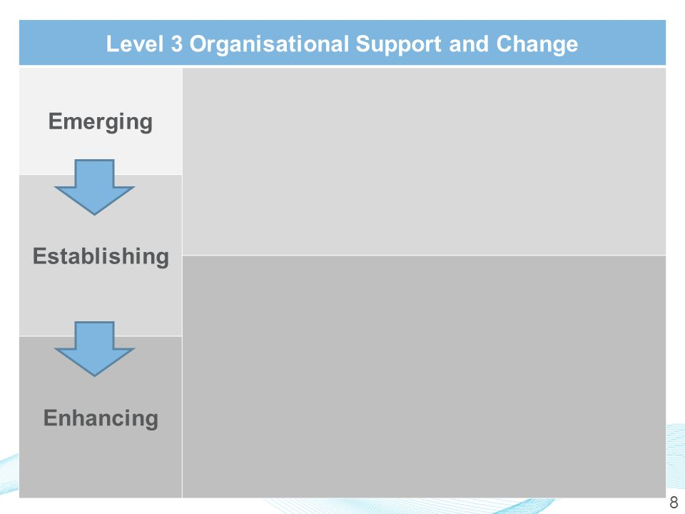 8 Level 3 Organisational Support and Change Emerging Establishing Enhancing