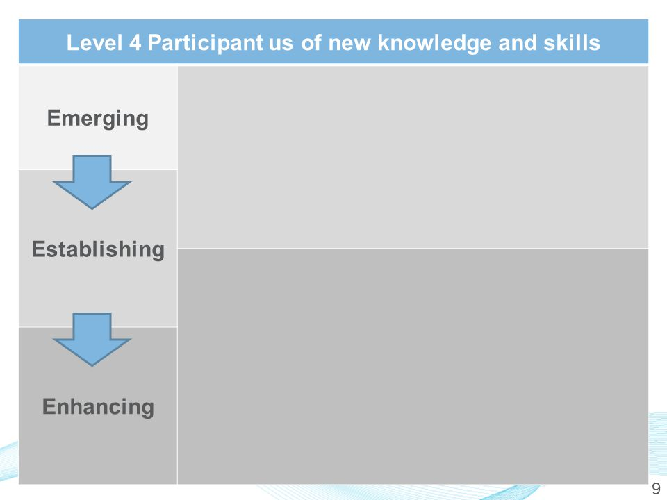 9 Level 4 Participant us of new knowledge and skills Emerging Establishing Enhancing