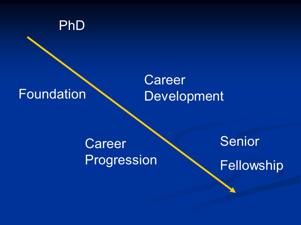 PhD Foundation Career Development Career Progression Senior Fellowship