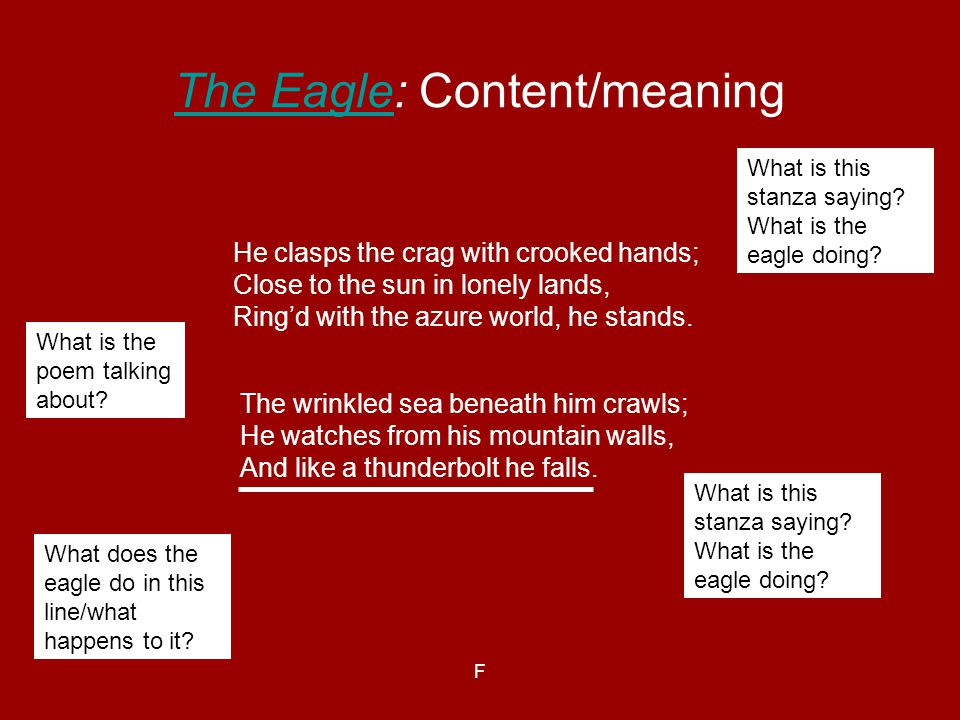 F The EagleThe Eagle: Content/meaning The wrinkled sea beneath him crawls; He watches from his mountain walls, And like a thunderbolt he falls. He cla