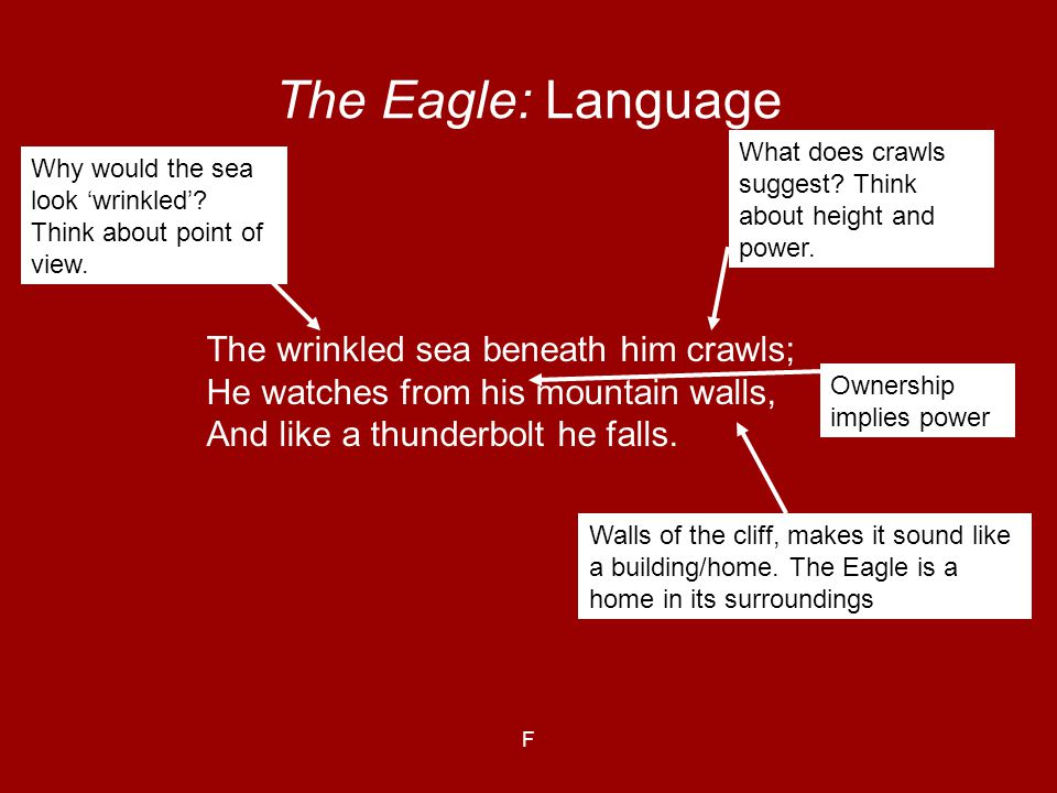 F The Eagle: Language The wrinkled sea beneath him crawls; He watches from his mountain walls, And like a thunderbolt he falls. Why would the sea look