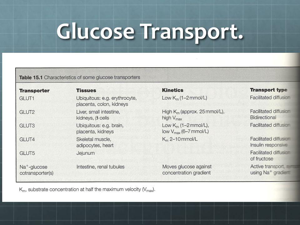 Glucose Transport.