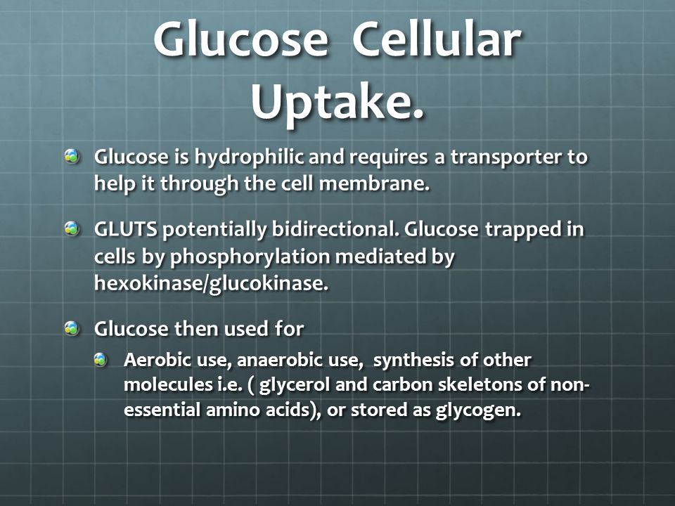 Glucose Cellular Uptake.