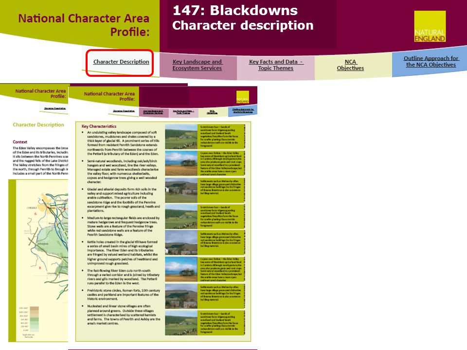 147: Blackdowns Character description