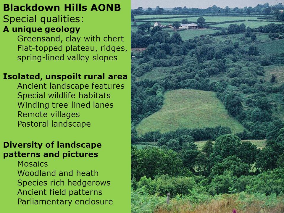 Blackdown Hills AONB Special qualities: A unique geology Greensand, clay with chert Flat-topped plateau, ridges, spring-lined valley slopes Isolated, unspoilt rural area Ancient landscape features Special wildlife habitats Winding tree-lined lanes Remote villages Pastoral landscape Diversity of landscape patterns and pictures Mosaics Woodland and heath Species rich hedgerows Ancient field patterns Parliamentary enclosure