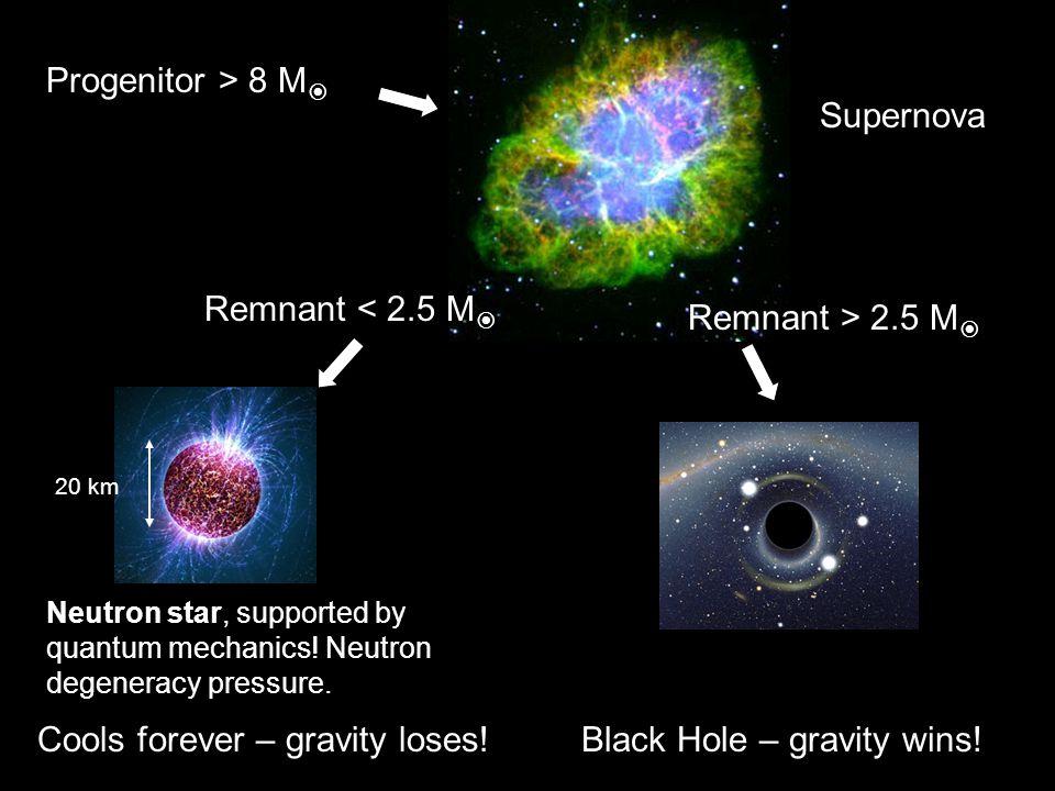 Progenitor > 8 M  Black Hole – gravity wins! Supernova Neutron star, supported by quantum mechanics! Neutron degeneracy pressure. Cools forever – gra
