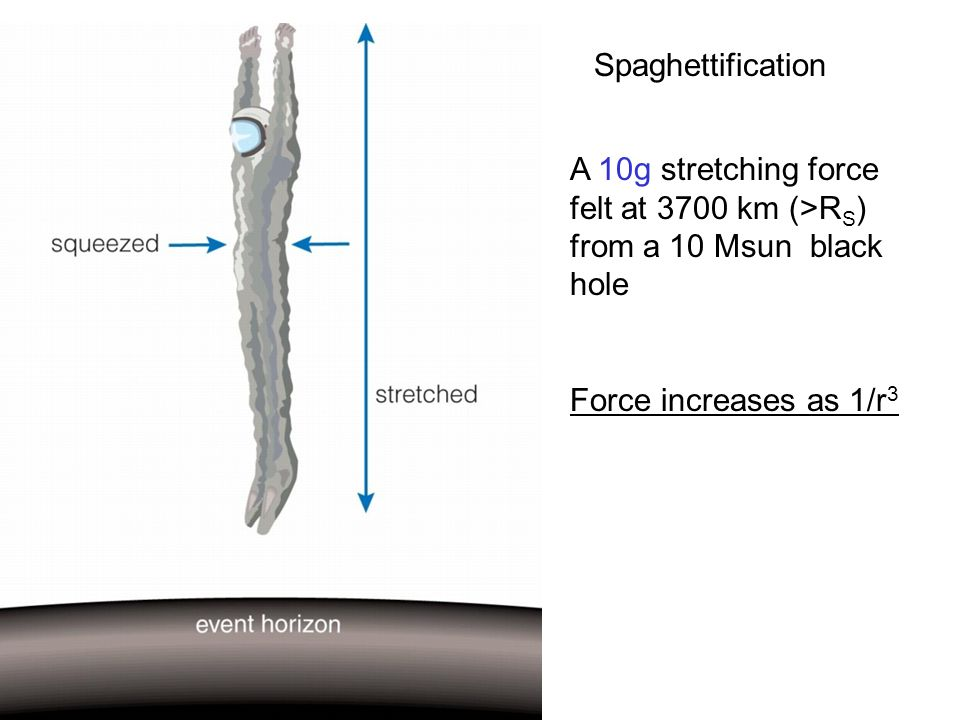 Spaghettification A 10g stretching force felt at 3700 km (>R S ) from a 10 Msun black hole Force increases as 1/r 3