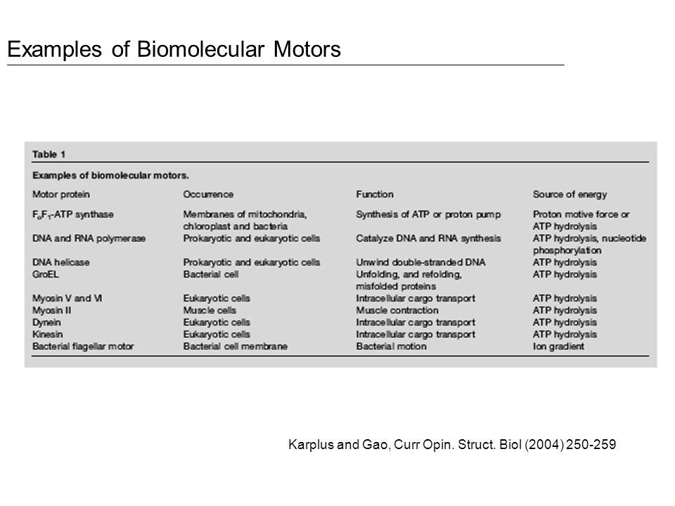 Examples of Biomolecular Motors Karplus and Gao, Curr Opin. Struct. Biol (2004) 250-259