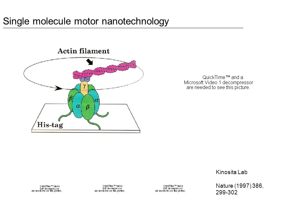 Kinosita Lab Nature (1997) 386, Single molecule motor nanotechnology