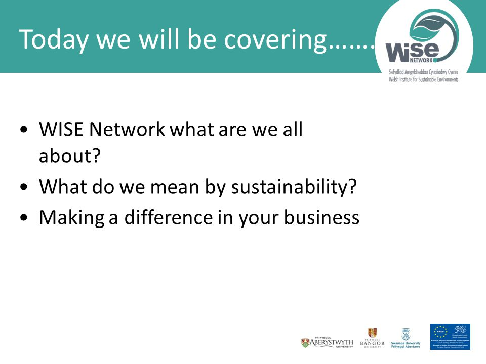WISE Network what are we all about. What do we mean by sustainability.