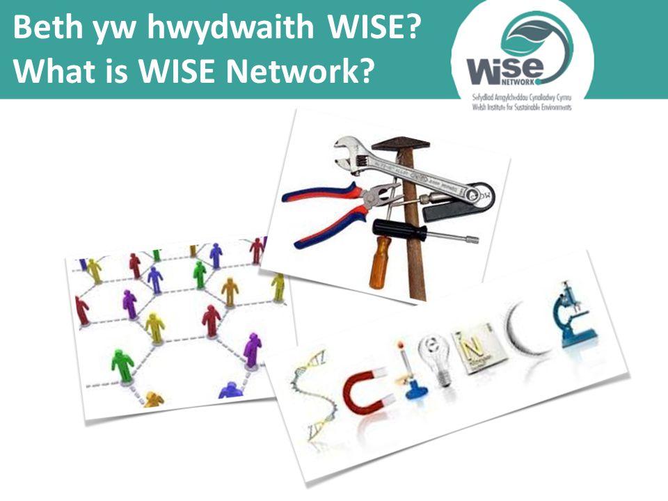Beth yw hwydwaith WISE What is WISE Network