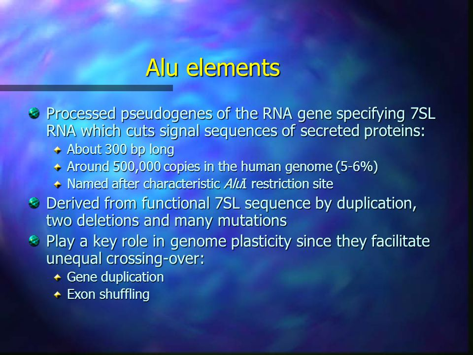 Alu elements Processed pseudogenes of the RNA gene specifying 7SL RNA which cuts signal sequences of secreted proteins: About 300 bp long Around 500,000 copies in the human genome (5-6%) Named after characteristic AluI restriction site Derived from functional 7SL sequence by duplication, two deletions and many mutations Play a key role in genome plasticity since they facilitate unequal crossing-over: Gene duplication Exon shuffling