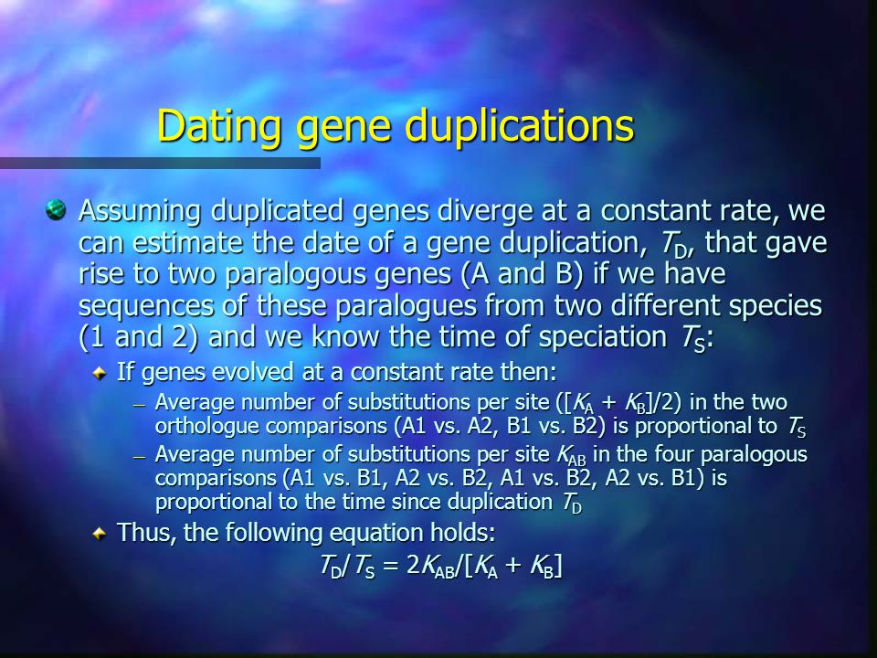 Dating gene duplications Assuming duplicated genes diverge at a constant rate, we can estimate the date of a gene duplication, T D, that gave rise to two paralogous genes (A and B) if we have sequences of these paralogues from two different species (1 and 2) and we know the time of speciation T S : If genes evolved at a constant rate then: — Average number of substitutions per site ([K A + K B ]/2) in the two orthologue comparisons (A1 vs.