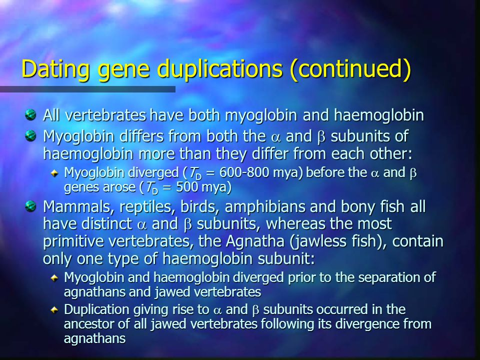 Dating gene duplications (continued) All vertebrates have both myoglobin and haemoglobin Myoglobin differs from both the  and  subunits of haemoglobin more than they differ from each other: Myoglobin diverged (T D = mya) before the  and  genes arose (T D = 500 mya) Mammals, reptiles, birds, amphibians and bony fish all have distinct  and  subunits, whereas the most primitive vertebrates, the Agnatha (jawless fish), contain only one type of haemoglobin subunit: Myoglobin and haemoglobin diverged prior to the separation of agnathans and jawed vertebrates Duplication giving rise to  and  subunits occurred in the ancestor of all jawed vertebrates following its divergence from agnathans