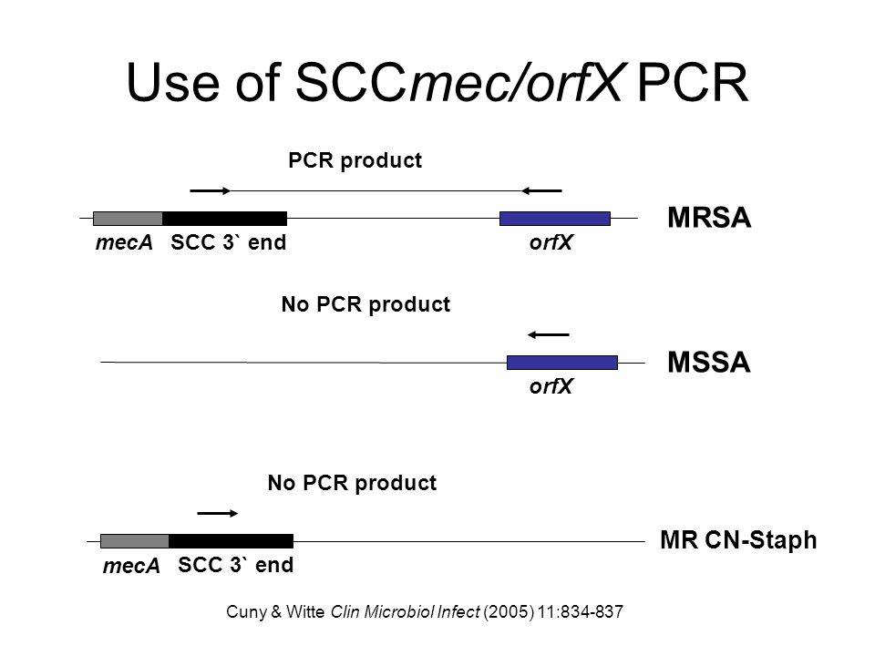 Use of SCCmec/orfX PCR PCR product mecA SCC 3` endorfX No PCR product orfX No PCR product mecA SCC 3` end MRSA MSSA MR CN-Staph Cuny & Witte Clin Micr